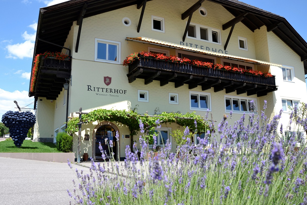 Ritterhof Weingut website